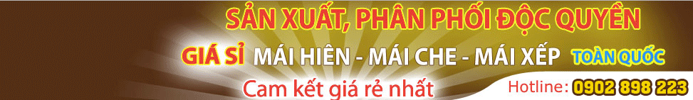 Mai Che Dong Anh